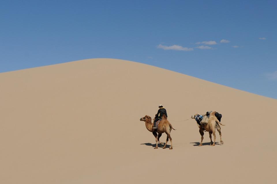 ゴビ砂漠の画像