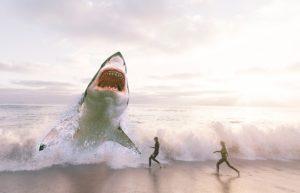人食いザメの画像