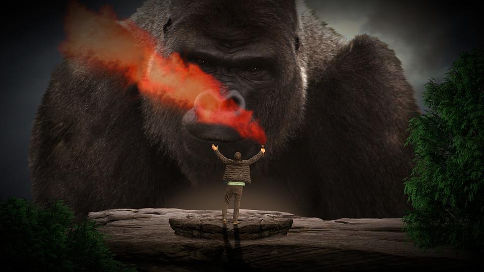 大猿の画像